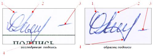 Почерковедческая Экспертиза Подписи Образец